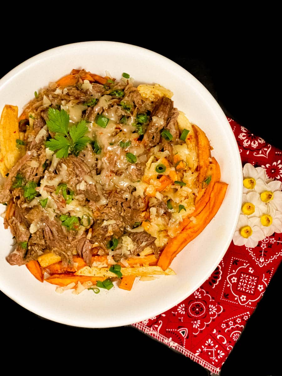 A big bowl of grain & gluten free garlic roast beef debris fries