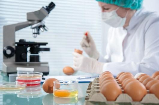 Food safety testing, lab, standards