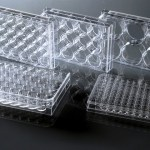 Multi-Well Cell Culture Plates