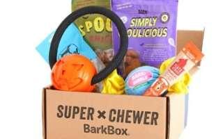 super chewer bark box