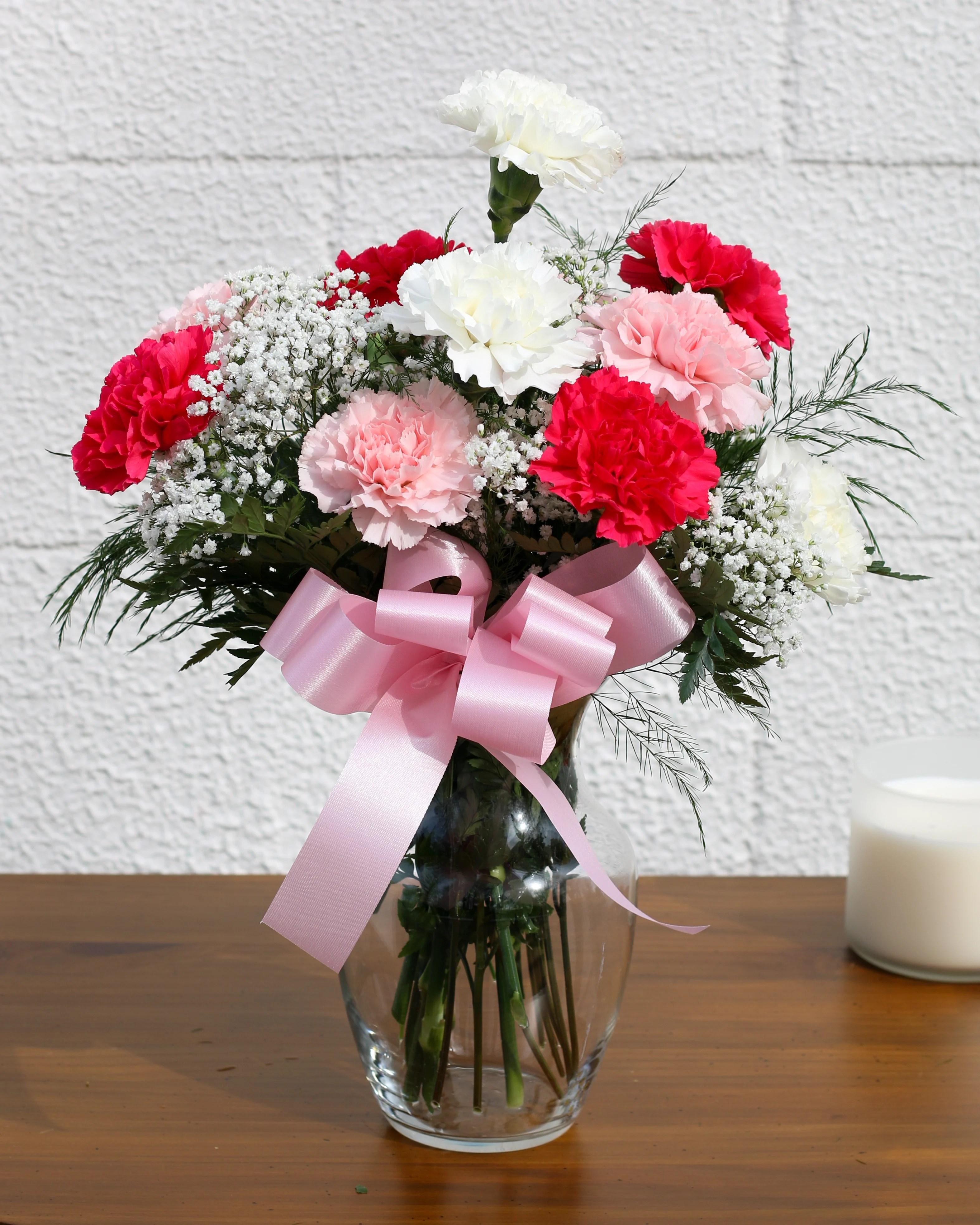 Pics Of Carnations : carnations, Dozen, Pretty, Carnations, FG208, Bensalem,, Flower, Florist