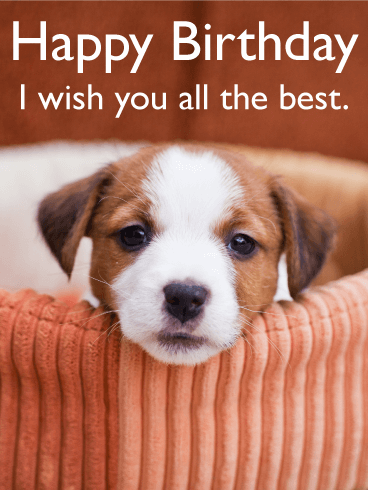 i wish you all