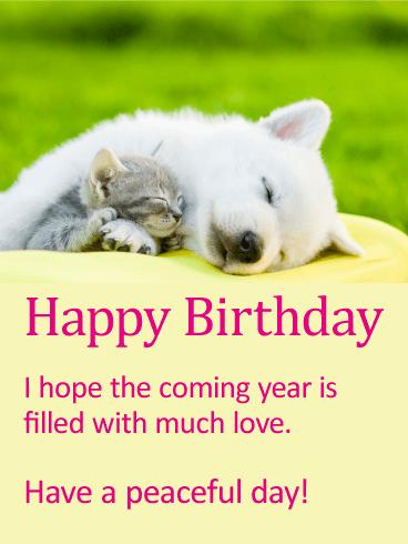 much love animal happy