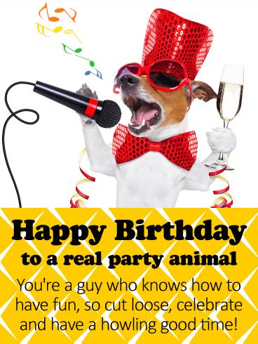 Happy Birthday Funny For Guy : happy, birthday, funny, Party, Animal, Happy, Birthday, Greeting, Cards, Davia