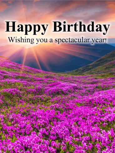 Birthday Greeting Cards Davia