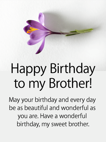 Birthday Flower Cards For Brother Birthday & Greeting