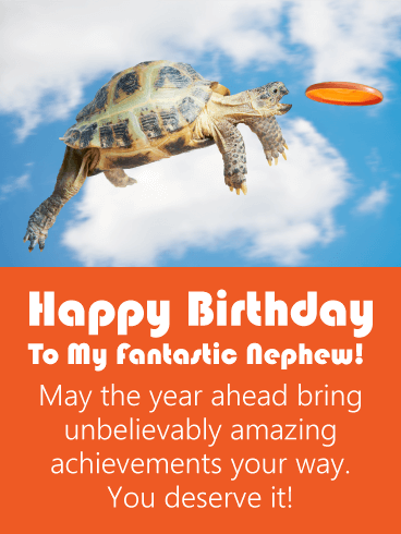 Happy Birthday Nephew Funny Images : happy, birthday, nephew, funny, images, Amazing, Turtle, Funny, Birthday, Nephew, Greeting, Cards, Davia