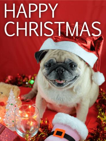 Santa Pug Merry Christmas Card Birthday & Greeting Cards