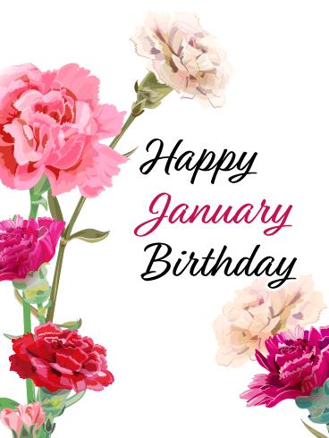 images January Birthday Images happy january birthday card carnation
