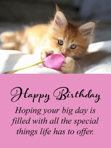Happy Birthday Cat Images - Happy Birthday Wishes