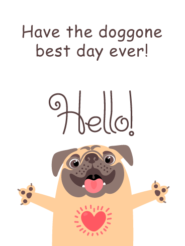 Hello Funny Image : hello, funny, image, Doggone, Funny, Saying, Birthday, Greeting, Cards, Davia