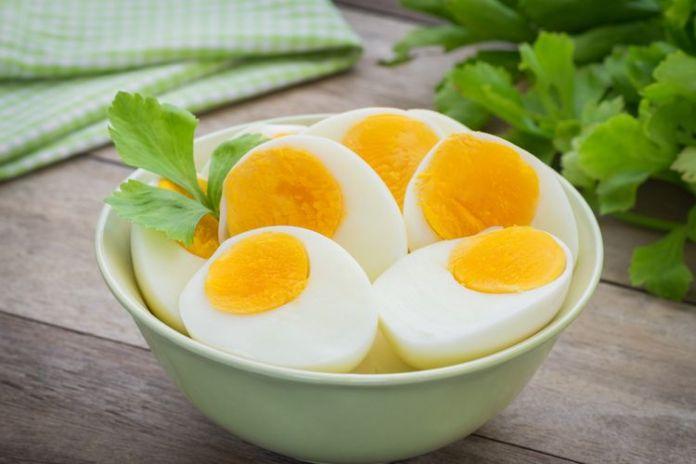 Hasil gambar untuk Telur