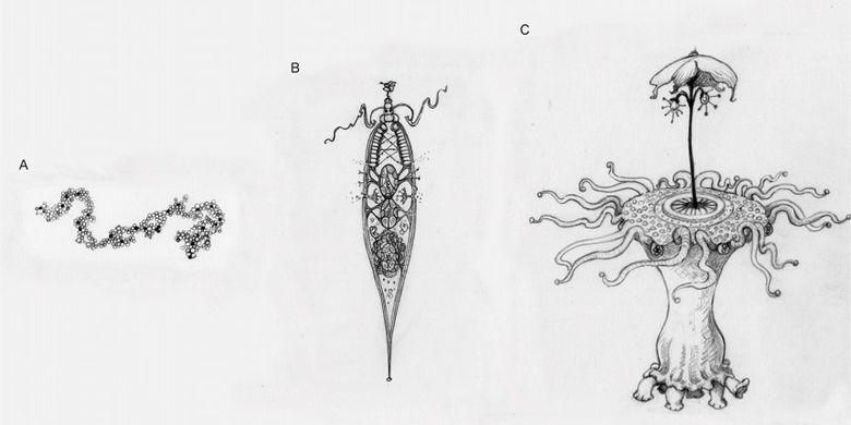 Anatomi perbandingan, biologi molekuler, biologi evolusioner,. Jika Kita Tak Sendiri, Bagaimanakah Rupa Alien? - Kompas.com