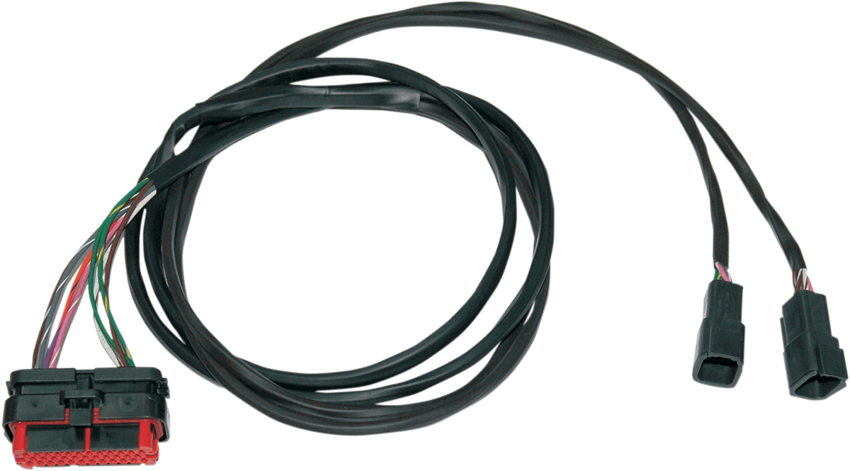 small resolution of wiring diagram for baja islander anchor light wiring library namz wiring harness rear speaker for harley