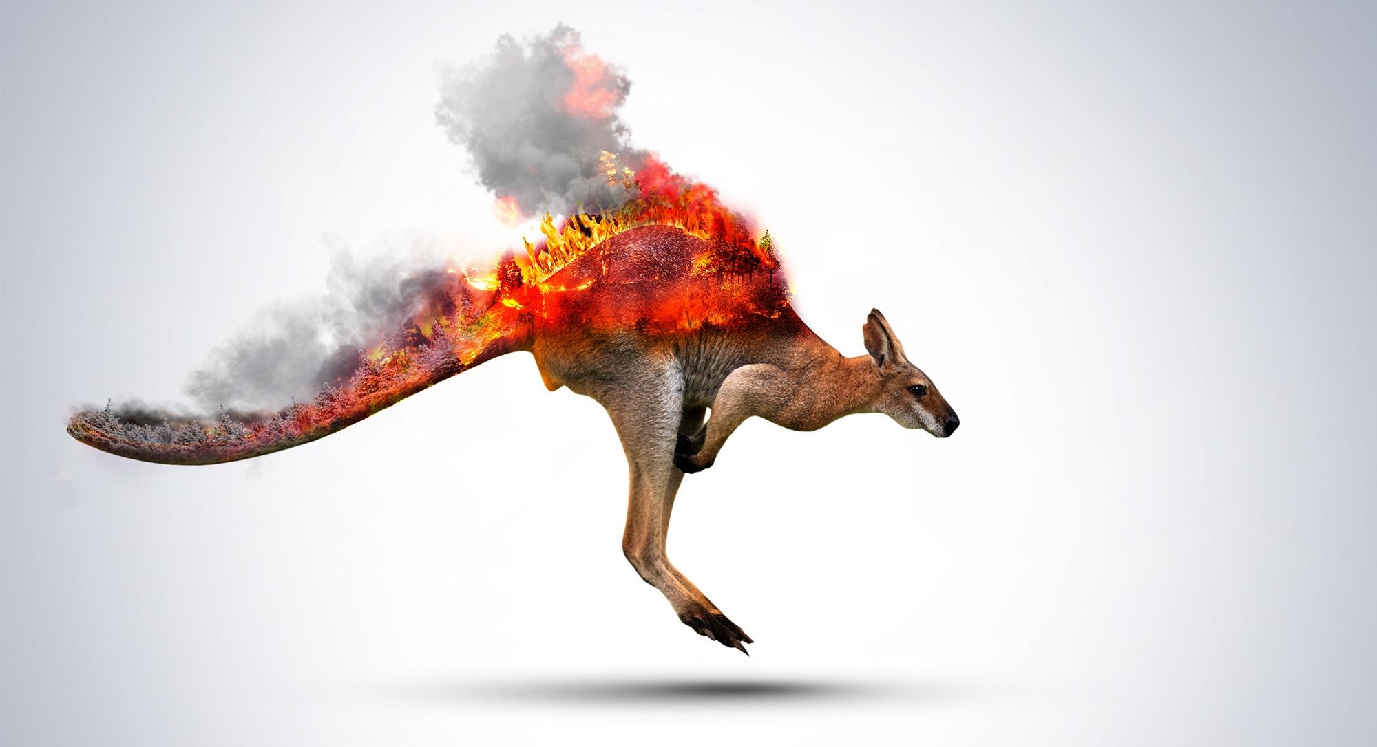 Les Incendies Ravagent L Australie Sydney Suffoque Les Habitants Fuient Les Autorites Font L Eloge Des Centrales A Charbon Journalisme Pensif