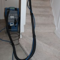 Fast Carpet Cleaners, Carpet And Upholstery Cleaners In ...