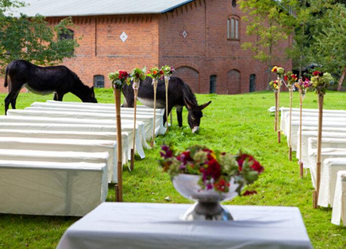 Heiraten im Sommer  Hochzeit auf dem Bauernhof