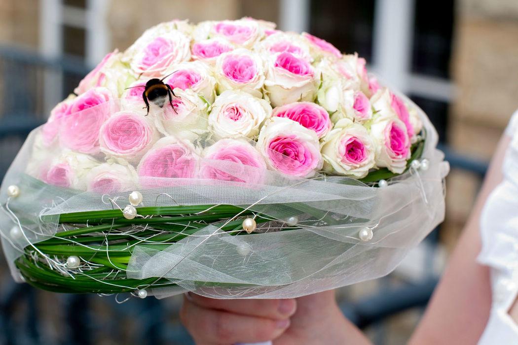 Blumenland Engler  Bewertungen Fotos und Telefonnummer