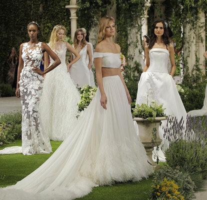 pronovias 2019 wedding dresses