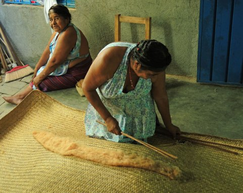 Feliza beats the brown cotton in preparation for spinning.