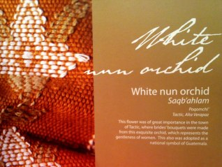 The motif, white nun orchid, is representative of a page from Mayan Threads of Guatemala.