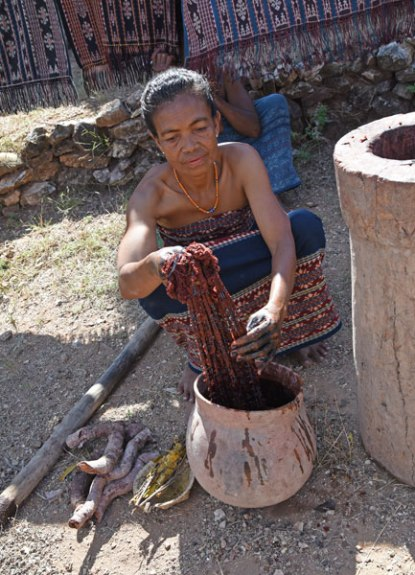 An ikat bundle being dyed in morinda. The morinda root is on the left. The large stone vessel on the right is where the root is pounded in prep for dyeing.