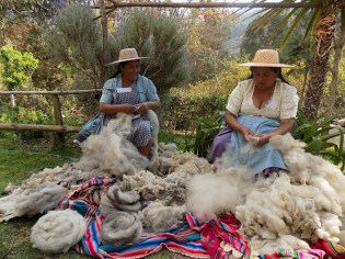 Warmis Phuskadoras of Bolivia prepping for Spinzilla spinning competition.