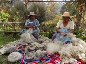 Warmis Phuskadoras of Bolivia prepping for Spinzilla spinning competition.