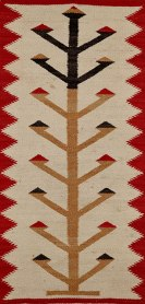 Ancient corn plant image from the Navajo.