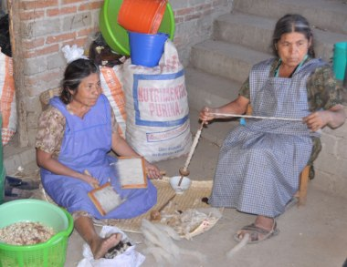 Carding and handspinning wool for rugs in Chichicapan.