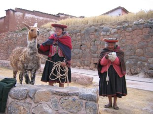 Ladies from Chinchero spinning with their camelid friend.