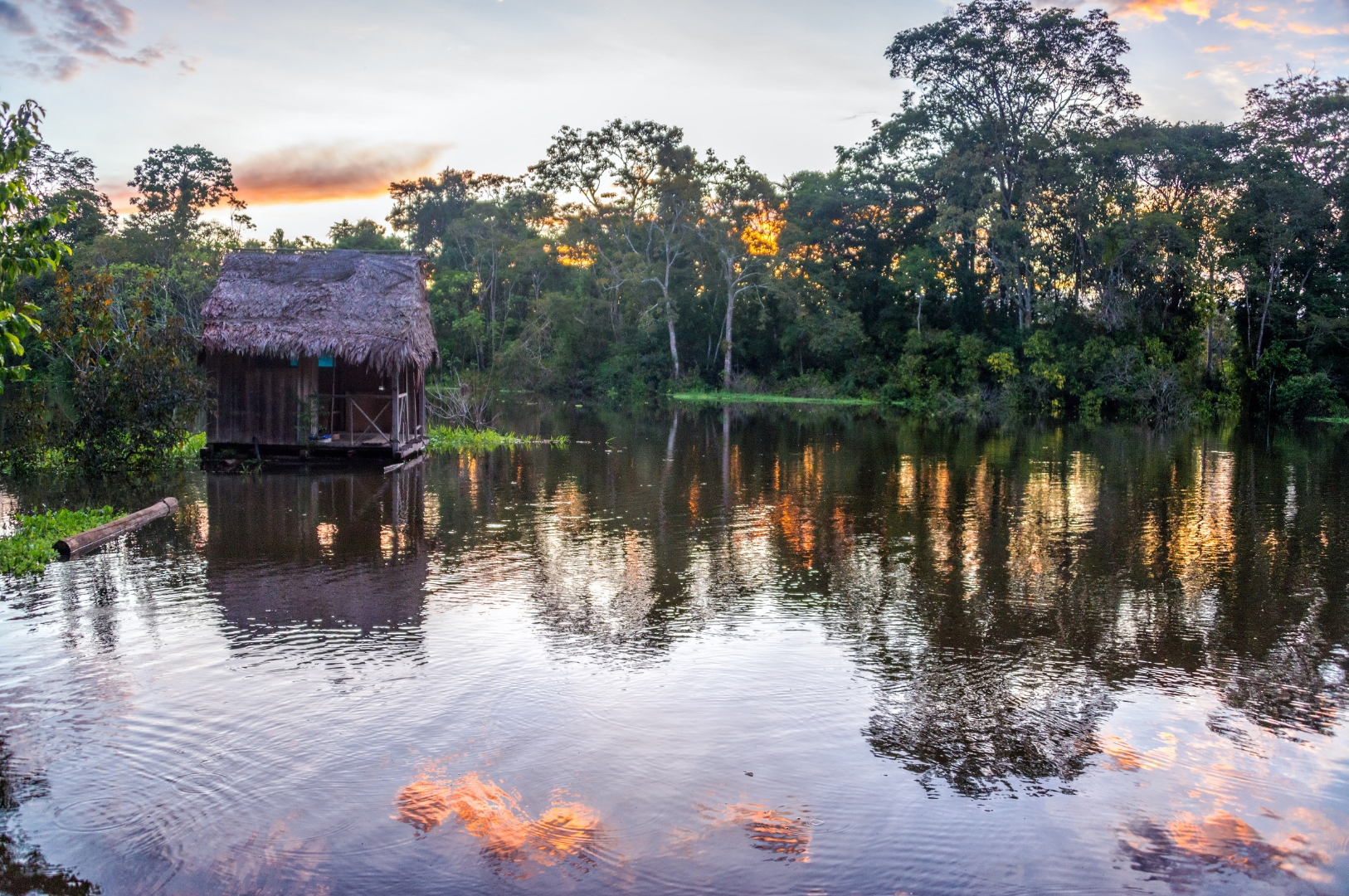 Amazon Trips In Peru For Young Adults