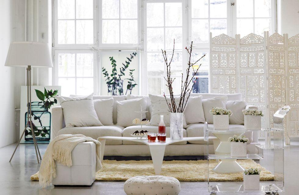 scandinave pour un salon cosy