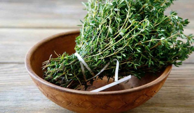 فوائد الزعتر الأخضر للجسم