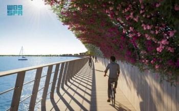 البحر الأحمر للتطوير تتعاقد مع أركيرودون لتشييد جسر جزيرة شُريرة - المواطن