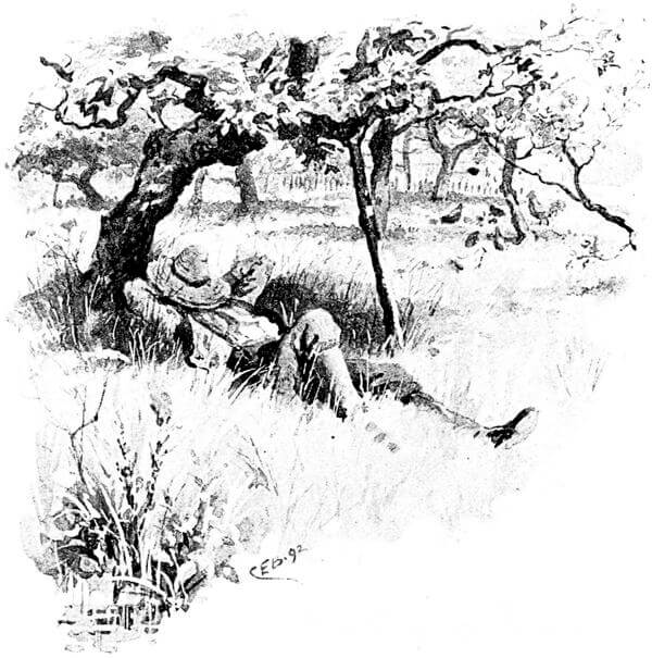 An illustration for the story June Bracken And Heather by the author Alfred Lord Tennyson