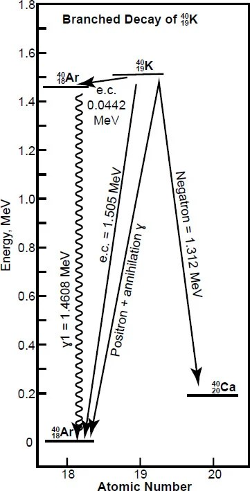 Determination of the Radioisotope Decay Constants and Half