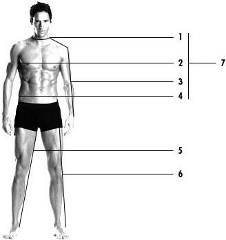 Menswear measurement guide