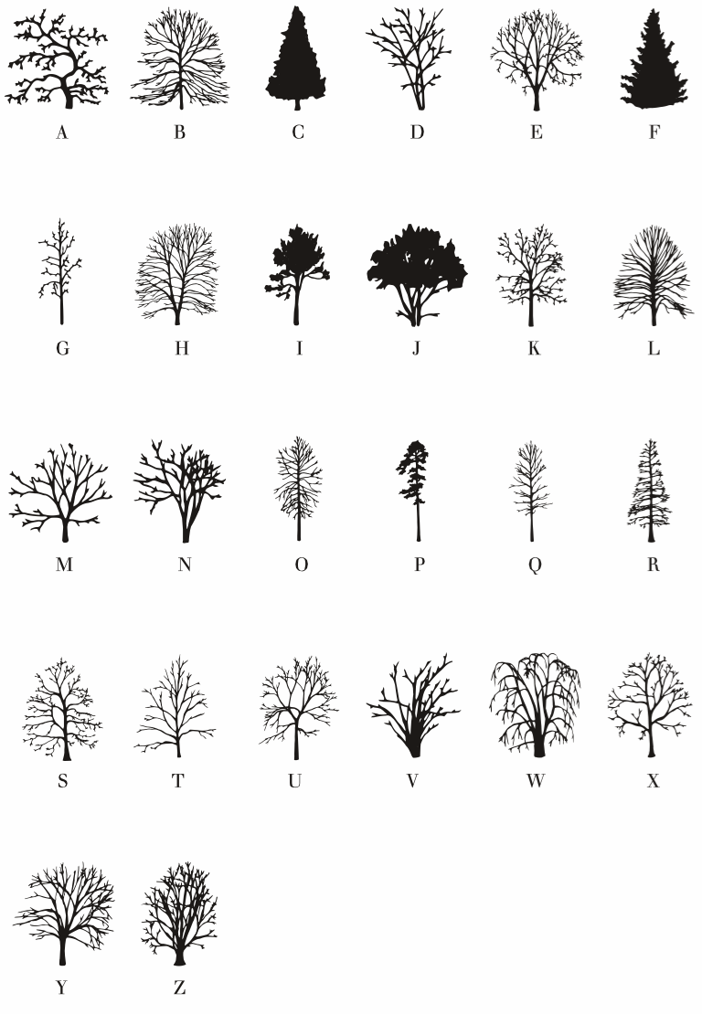 Tree alphabets: from Alpine Larch to Zelkova Serrata