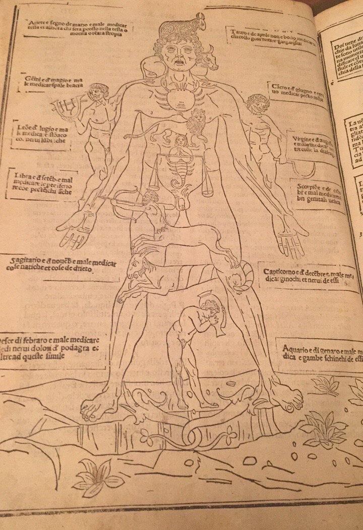 Zodiac Man, 1522