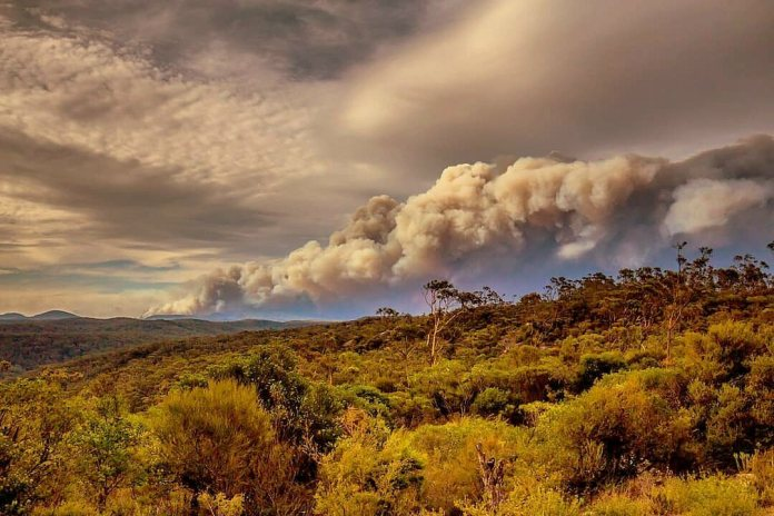 Australia has been burning for several months. This fire was pictured at Gospers Mountain in December 2019.