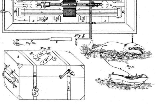 Floraphone Wiring Diagram : 25 Wiring Diagram Images