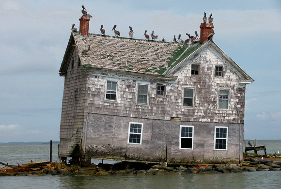 Holland Island Toddville Maryland Atlas Obscura