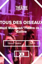 Tous Des Oiseaux Wajdi Mouawad : oiseaux, wajdi, mouawad, Balcon, Oiseaux, Théâtre, Expositions, Résumé,, Critiques, Spectateurs,, Bande, Annonce