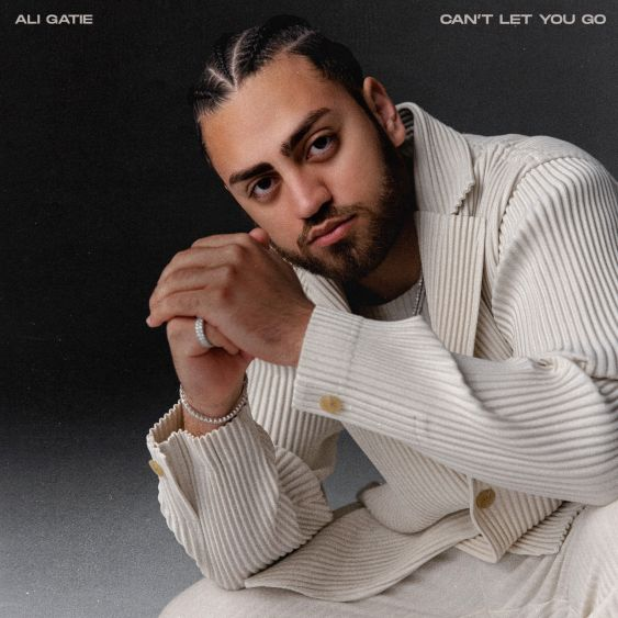 Ali Gatie - Can't Let You Go Mp3 download