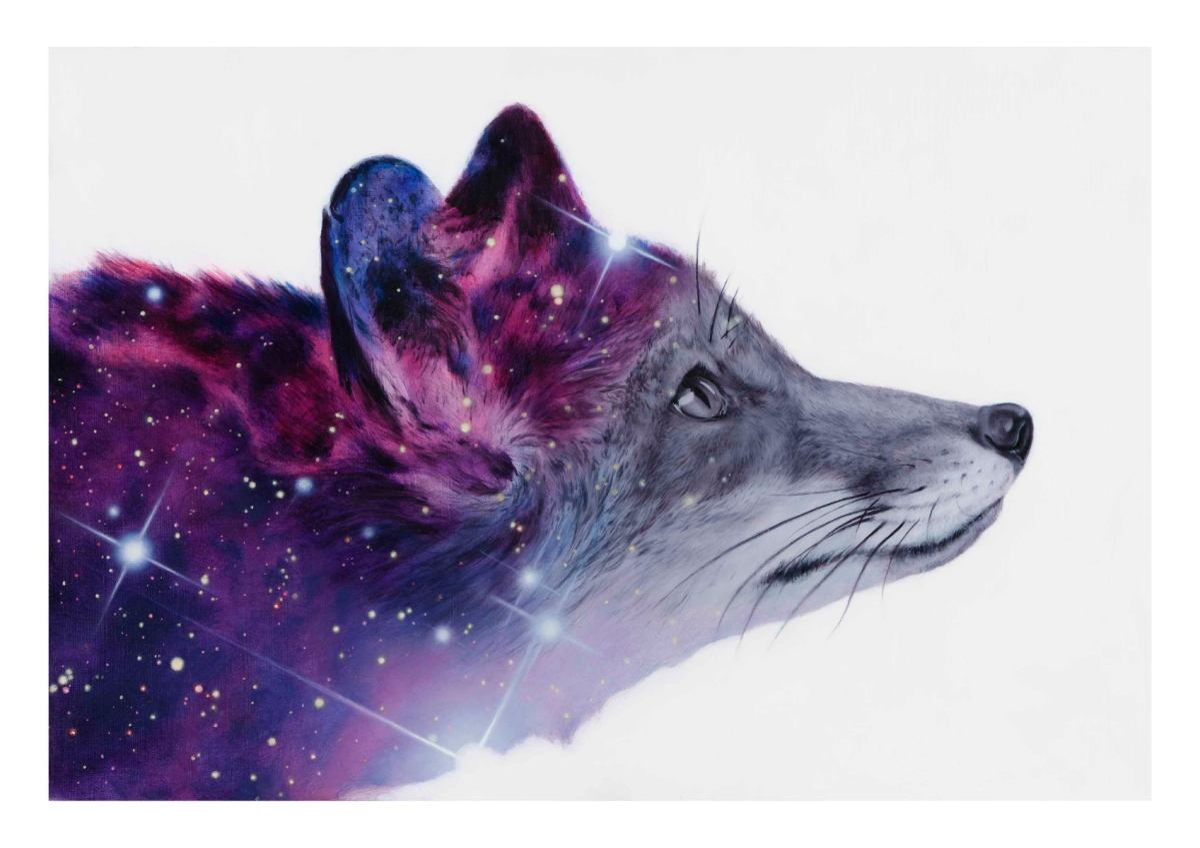 Fox Fur Nebula Open Edition Giclee Print Limited