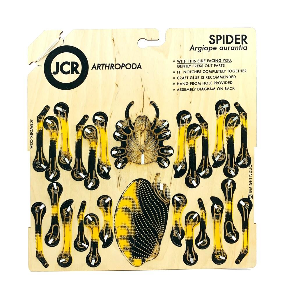 hight resolution of image of jcr arthropoda spider