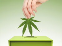ballot_box_leaf