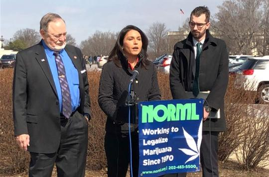 NORML Press Conference