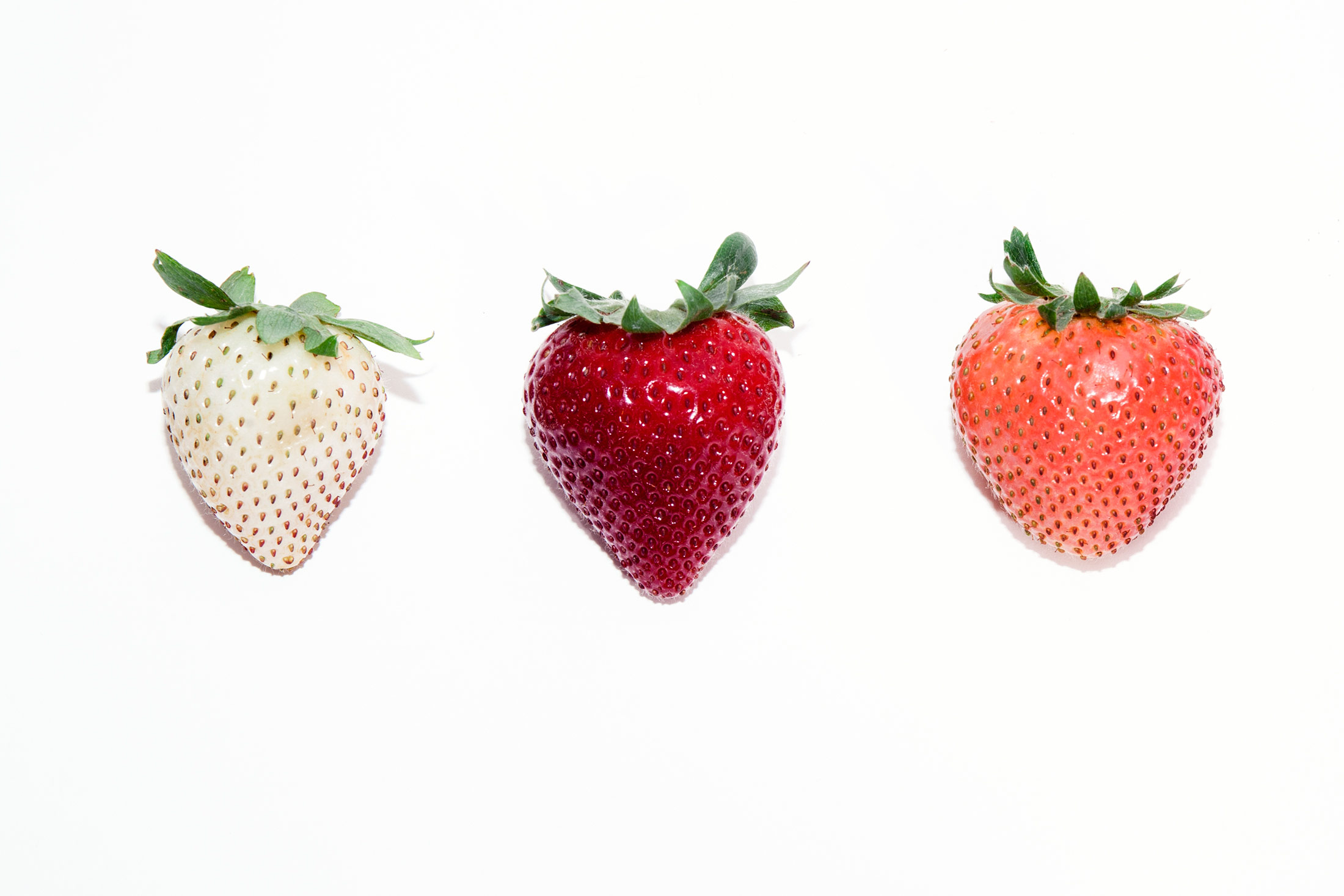 How Driscoll S Is Hacking The Strawberry Of The Future